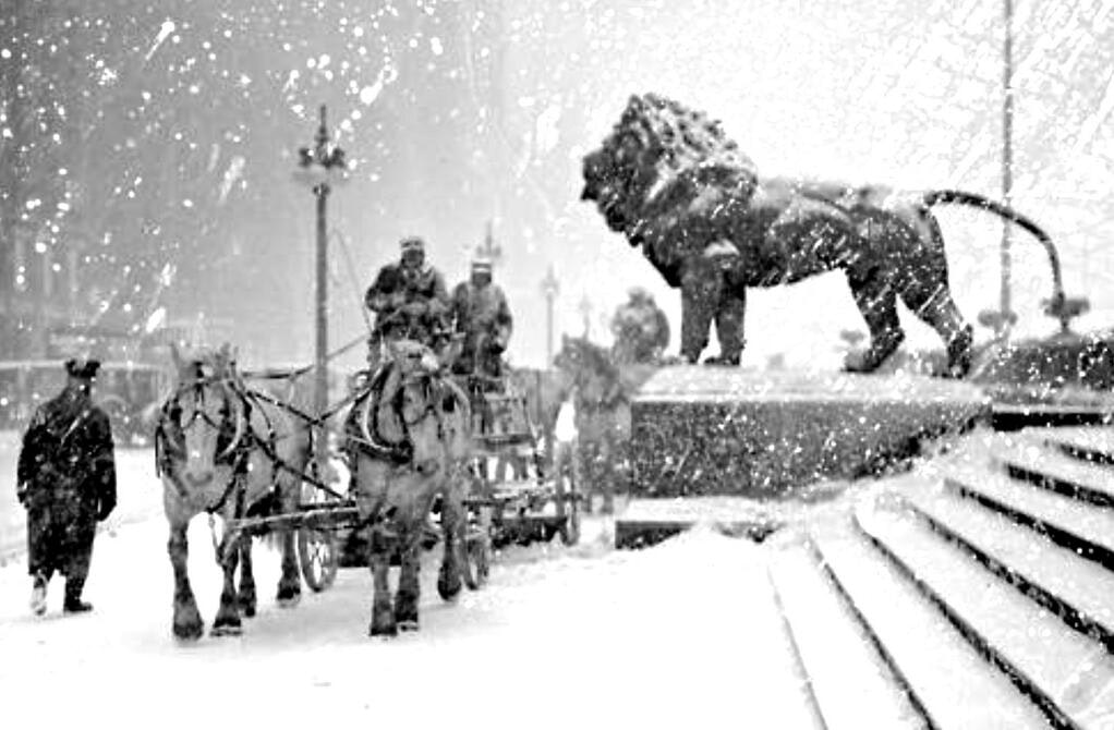 Lions and horses during snowstorm in 1925