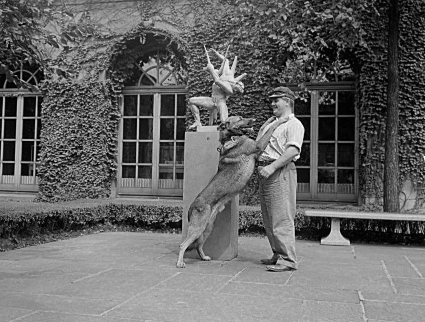Utz von Stornfels, museum watch dog, with Bill Seiler in McKinlock Court  August 21, 1941