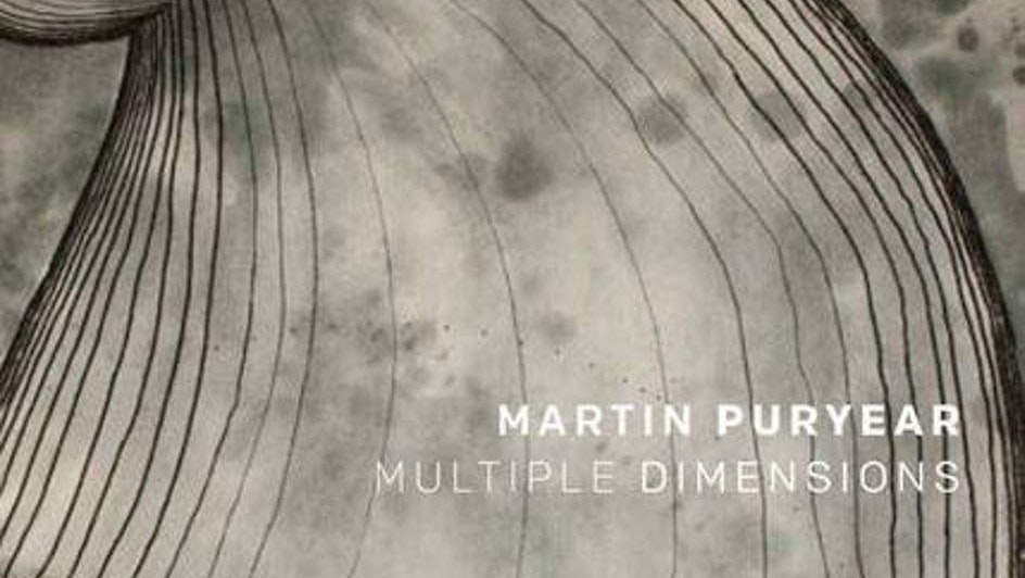 Martin Puryear: Multiple Dimensions cover