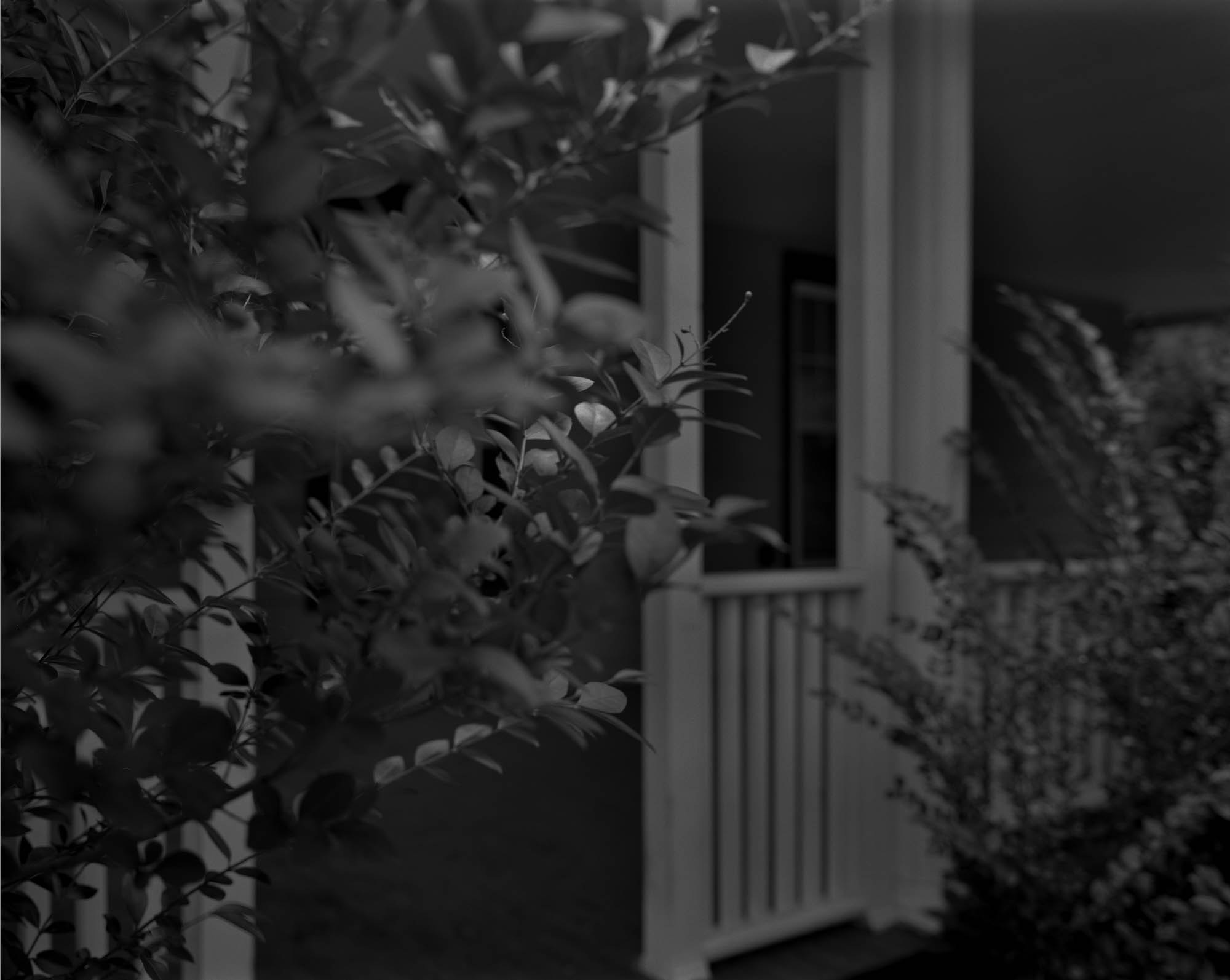 A black and white photo of a white front porch, with leaves from a bush or tree in the foreground.