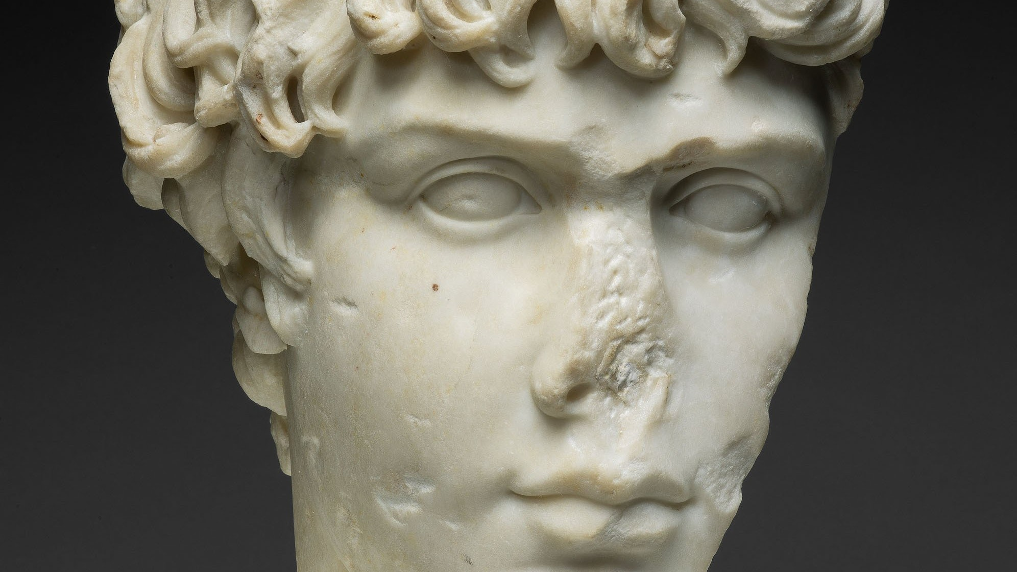 1924.979 Fragment Of A Portrait Head Of Antinous