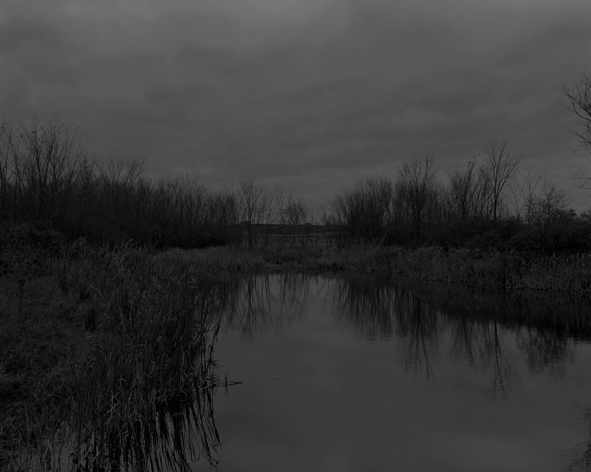 A black and white photo of a marsh.
