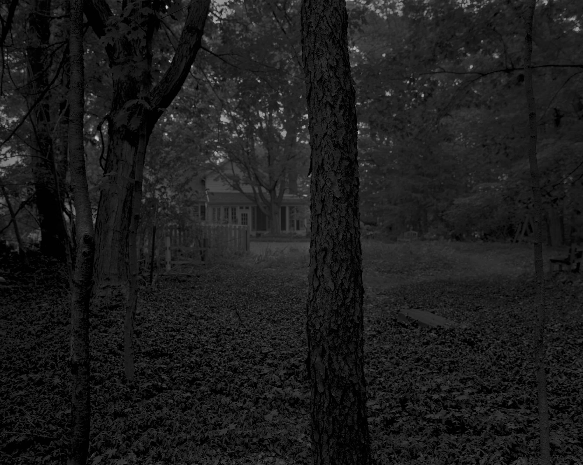 A black and white photo in a forest.