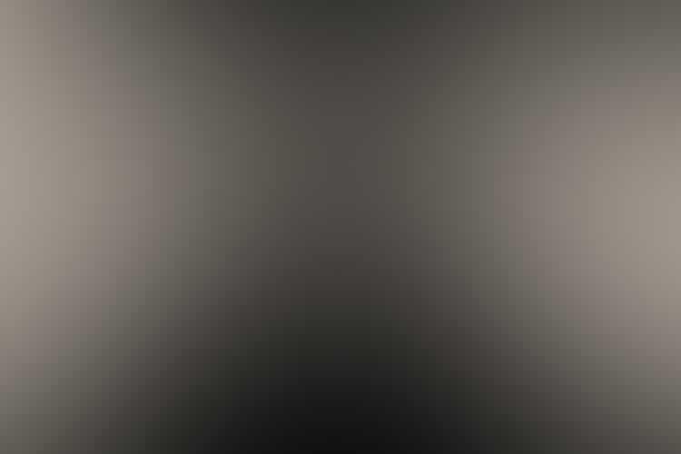 Aryoungelyseblennerhassettlargegray