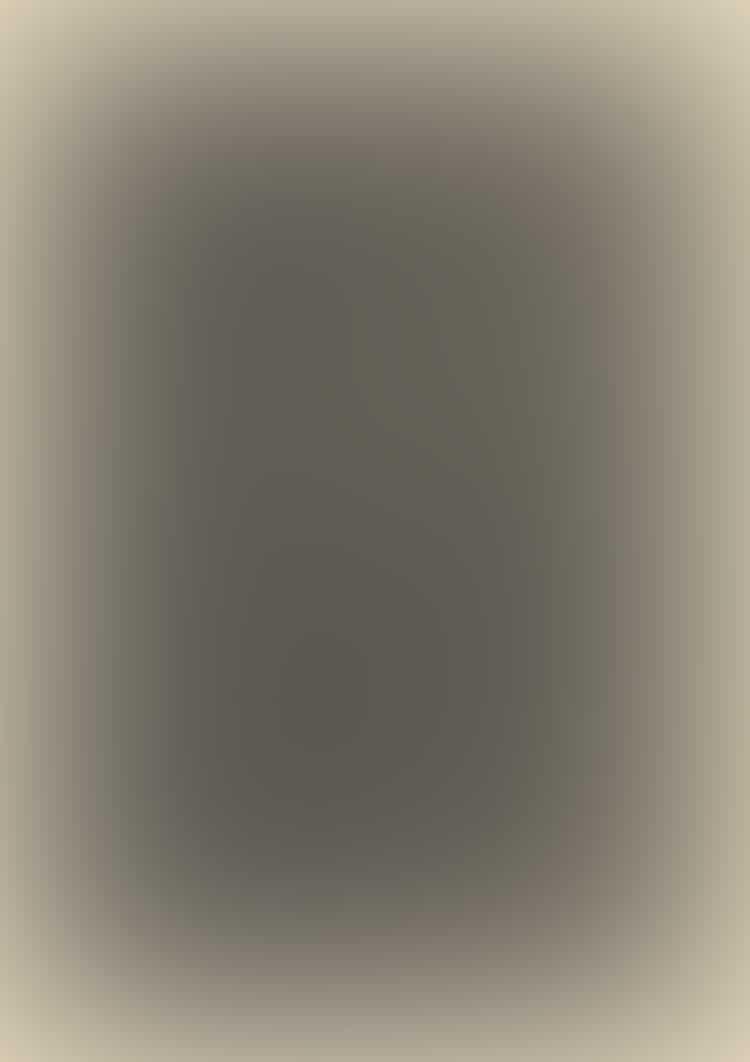 Portrait Of Alfred Stieglitz